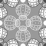Ελαφριά & σκούρο γκρι περίληψη succulents στο γκρίζο υπόβαθρο Στοκ Φωτογραφία
