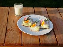 Ελαφρύ γεύμα σάντουιτς Στοκ Εικόνες