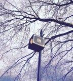 ελαφρύ διάνυσμα απεικόνισης ιδέας έννοιας βολβών Στοκ φωτογραφία με δικαίωμα ελεύθερης χρήσης