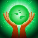 Ελαφρύ υπόβαθρο λάμψης χεριών εγκαταστάσεων οικολογίας σφαιρών μαγικό διανυσματική απεικόνιση