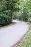 Ελαφρώς αναμμένος δρόμος στο δάσος Στοκ Εικόνες