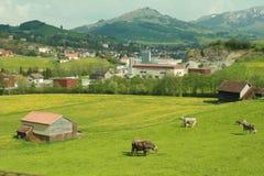 ελβετικά Στοκ φωτογραφία με δικαίωμα ελεύθερης χρήσης