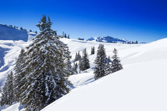 Ελβετικές Άλπεις που καλύπτονται το φρέσκο νέο χιόνι που βλέπει από από το σκι hoch-Ybrig σχετικά με Στοκ φωτογραφία με δικαίωμα ελεύθερης χρήσης