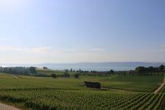 Ελβετική όψη λιμνών Στοκ Φωτογραφία