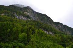 Ελβετικό βουνό Στοκ φωτογραφία με δικαίωμα ελεύθερης χρήσης