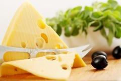 Ελβετικό τυρί περικοπών Στοκ Εικόνα
