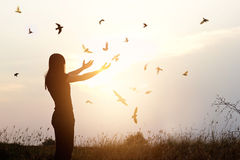 Ελευθερία της ζωής, του ελεύθερων πουλιού και της γυναίκας που απολαμβάνουν τη φύση στο ηλιοβασίλεμα Στοκ Εικόνες