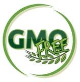 Ελεύθερη ετικέτα ΓΤΟ Στοκ Εικόνα