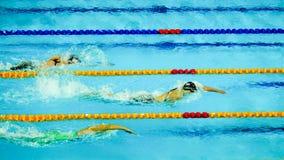 ελεύθερη κολύμβηση PanPacs 2014 200m στοκ εικόνα