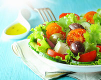 Ελληνική σαλάτα φέτας και ελιών Στοκ εικόνα με δικαίωμα ελεύθερης χρήσης