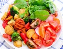 Ελληνική σαλάτα Vegan στοκ εικόνα με δικαίωμα ελεύθερης χρήσης