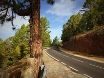 Ελικοειδής δρόμος βουνών στοκ φωτογραφίες με δικαίωμα ελεύθερης χρήσης