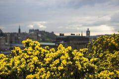 Εδιμβούργο Στοκ Εικόνες
