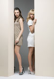 Ελκυστικές γυναίκες που κρύβουν theirselves πίσω από τον τοίχο Στοκ φωτογραφία με δικαίωμα ελεύθερης χρήσης