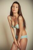 Ελκυστικό λεπτό κορίτσι brunette lingerie Στοκ φωτογραφίες με δικαίωμα ελεύθερης χρήσης