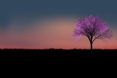 δεδομένου ότι το σχέδιο ενσωματώνει τη χρήση δέντρων σύστασης σκιαγραφιών Στοκ Εικόνες