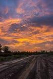 ελώδη βραδιού πεδίων δάση της Ουκρανίας ήλιων λιμνών μικρά Στοκ εικόνες με δικαίωμα ελεύθερης χρήσης