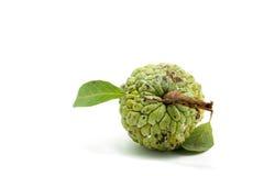 Ζάχαρη Apple (μήλο κρέμας, Annona, sweetsop) Στοκ φωτογραφίες με δικαίωμα ελεύθερης χρήσης