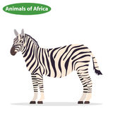 Ζέβες, ζέβες εικονίδιο, αφρικανικά ζώα διανυσματική απεικόνιση