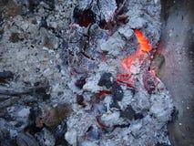 Ζήστε άνθρακες Στοκ εικόνα με δικαίωμα ελεύθερης χρήσης