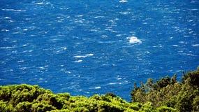 Ζήστε μπλε κύματα Στοκ Φωτογραφίες