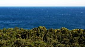 Ζήστε μπλε κύματα 2 Στοκ Φωτογραφία