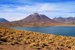Ζαλίζοντας άποψη της βαθιάς μπλε λίμνης Miscanti χρώματος με Cerro Miscanti το βουνό στο υπόβαθρο, βόρεια Χιλή στοκ εικόνα με δικαίωμα ελεύθερης χρήσης