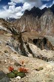 Ζαλίζοντας βουνά Karakorum Στοκ εικόνα με δικαίωμα ελεύθερης χρήσης