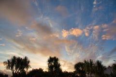 Ζαλίζοντας ηλιοβασίλεμα με να ραβδώσει τα σύννεφα και τους φοίνικες στοκ φωτογραφία