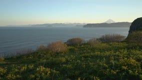 Ζαλίζοντας τοπίο θερινών βουνών του Pacific Coast της χερσονήσου Καμτσάτκα απόθεμα βίντεο