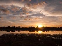 Ζαλίζοντας φωτεινή καθορισμένη σκηνή ήλιων συγκομιδών φθινοπώρου πέρα από το νερό REF λιμνών Στοκ Εικόνα