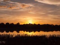 Ζαλίζοντας φωτεινή καθορισμένη σκηνή ήλιων συγκομιδών φθινοπώρου πέρα από το νερό REF λιμνών Στοκ εικόνες με δικαίωμα ελεύθερης χρήσης