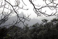 Ζαλίζοντας φύση στις ορεινές περιοχές Cruz de Tejeda σε θλγραν θλθαναρηα, Κανάριο νησί κάτω από την ισπανική σημαία στοκ εικόνα με δικαίωμα ελεύθερης χρήσης