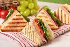 Ζαμπόν και τυρί σάντουιτς λεσχών θερινών πικ-νίκ σε μια σειρά Στοκ Φωτογραφία