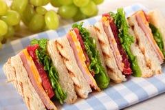 Ζαμπόν και τυρί σάντουιτς λεσχών θερινών πικ-νίκ σε μια σειρά Στοκ εικόνες με δικαίωμα ελεύθερης χρήσης