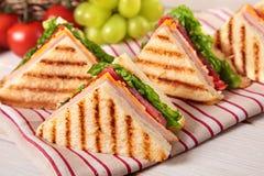 Ζαμπόν και τυρί σάντουιτς λεσχών θερινών πικ-νίκ σε μια σειρά Στοκ φωτογραφίες με δικαίωμα ελεύθερης χρήσης