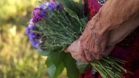 Ζαρωμένοι παππούδες και γιαγιάδες χεριών με τα λουλούδια, κινηματογράφηση σε πρώτο πλάνο απόθεμα βίντεο