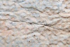ζαρωμένος σίδηρος παλαιός Στοκ Εικόνα
