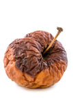 Ζαρωμένο σάπιο μήλο Στοκ φωτογραφία με δικαίωμα ελεύθερης χρήσης