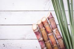 Ζαχαροκάλαμο και πράσινος στενός επάνω φύλλων Στοκ Εικόνες