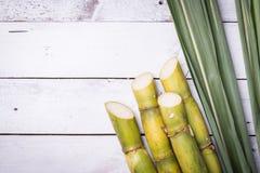 Ζαχαροκάλαμο και πράσινος στενός επάνω φύλλων Στοκ φωτογραφία με δικαίωμα ελεύθερης χρήσης