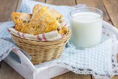 Ζαχαρωμένα scones με τα τσιπ σοκολάτας Στοκ εικόνα με δικαίωμα ελεύθερης χρήσης