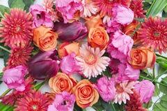 Ζαλίζοντας μίγμα των τριαντάφυλλων, των gerberas και των τουλιπών στοκ εικόνες