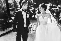 Ζαλίζοντας περίπατοι γαμήλιων ζευγών κατά μήκος του περάσματος στο πάρκο Στοκ Εικόνα