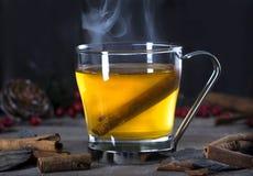 Ζεστό ποτό κοκτέιλ χυμού φοινικόδεντρου με την κανέλα Στοκ εικόνες με δικαίωμα ελεύθερης χρήσης