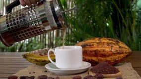 Ζεστό ποτό σοκολάτας, ακατέργαστα φρούτα κακάου, φασόλια κακάου, nibs κακάου φιλμ μικρού μήκους