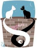 ζευγάρι γατακιών Στοκ εικόνες με δικαίωμα ελεύθερης χρήσης