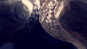 Ζευγάρι του εκλεκτής ποιότητας άσπρου περιστεριού φιαγμένο από υπόβαθρο χαλκού και ήλιων περιστέρια ειδωλίων φιαγμένα από μέταλλο απόθεμα βίντεο