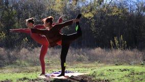 Ζευγάρι των γυναικών που ασκούν τον αθλητισμό ικανότητας γιόγκας στο δασικό πάρκο φιλμ μικρού μήκους