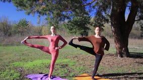 Ζευγάρι των γυναικών που ασκούν τον αθλητισμό ικανότητας γιόγκας στο δασικό πάρκο απόθεμα βίντεο